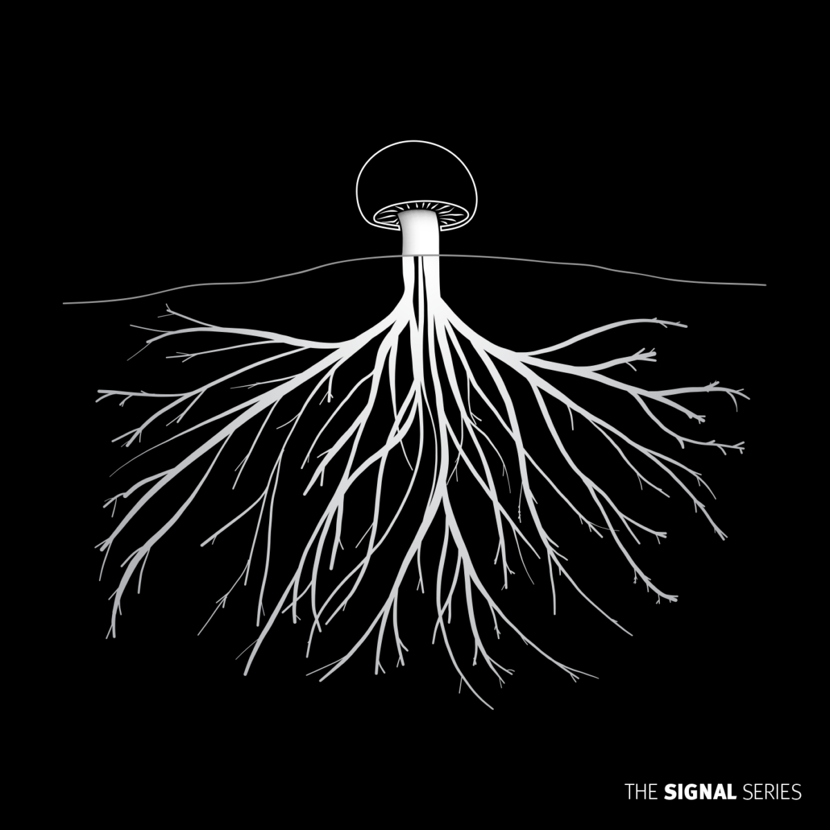 Cover image, an illustration of a mushroom with roots, in a black background